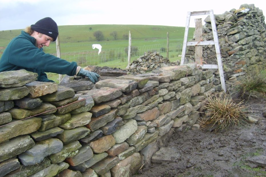 The easiest way of building a stone wall for your country house