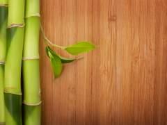 Flooring natural bamboo