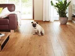 The flooring in the house dog owners