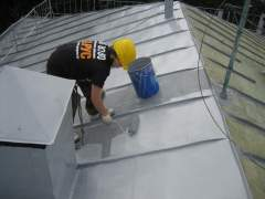 Paint roof: galvanized metal