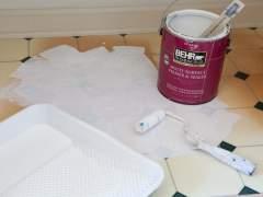 Paint a vinyl floor roller